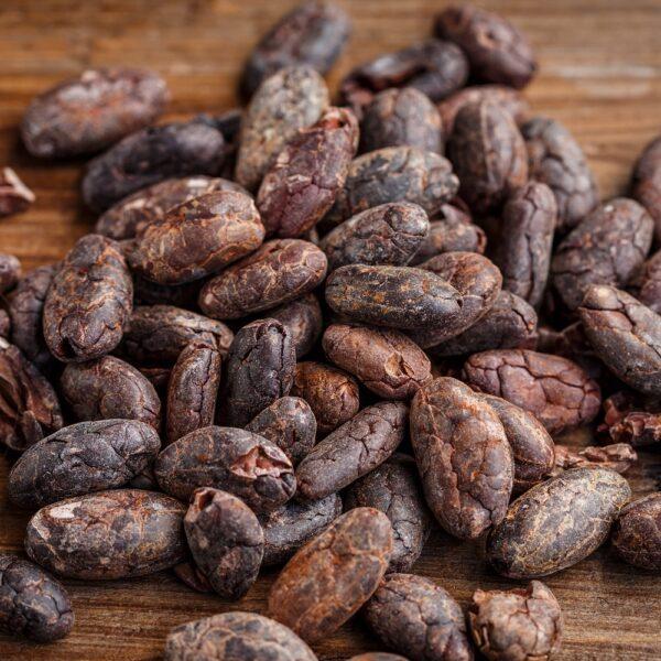 CO2 Cacaoboon