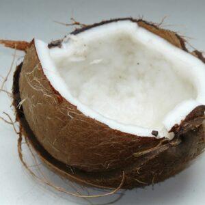 PO Kokosnoot